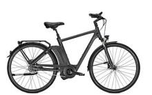 E-Bike Raleigh NEWGATE