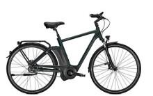 E-Bike Raleigh NEWGATE PREMIUM