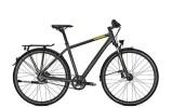 Citybike Raleigh RUSHHOUR 6.5