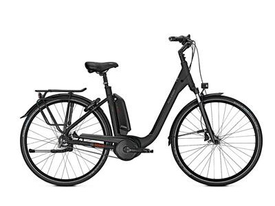 Raleigh KINGSTON R Premium