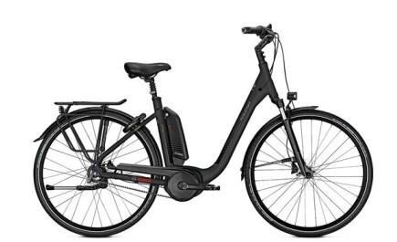 Raleigh Kingston Premium