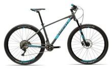 Mountainbike GIANT Terrago 2 LTD