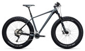 Mountainbike Cube Nutrail Race grey´n´black