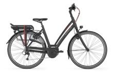 E-Bike Gazelle Chamonix T10 HMB