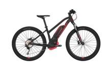 E-Bike Conway eMR 327 -40 cm