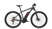 E-Bike Conway eMR 429 -48 cm