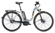 E-Bike Breezer Bikes Powertrip  1.1 IG + LS