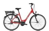 E-Bike Rixe BORDEAUX B8R