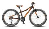 Kinder / Jugend KTM Bikes WILD SPEED 24.9 light