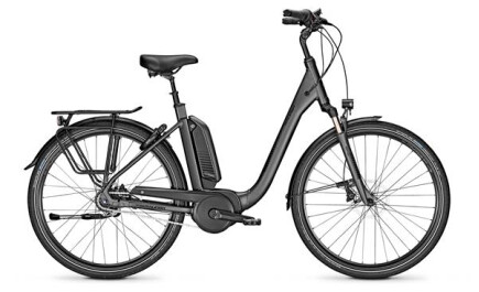 Raleigh Kingston R 8 XXL