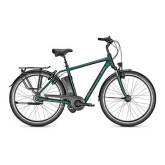 Raleigh Dover Impulse XXL, 170kg, Herren E-Bike, Akku: 17.0 Ah, 8-Gang Nabenschaltung, Freilauf!