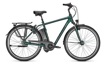 Raleigh Dover Impulse XXL, Herren E-Bike, 170 kg Gesamtgew. Akku:17 Ah, 8-Gang Nabenschaltung, Rücktrittbr.