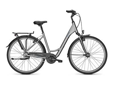 Raleigh Chester 8 grey