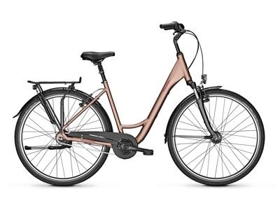 Raleigh CHESTER 8 - brown - Größe 50