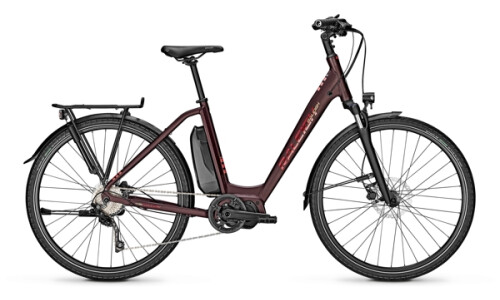 Raleigh Stone 10 60Nm 504 Wh