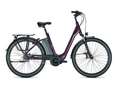 Raleigh Corby 8 XXL