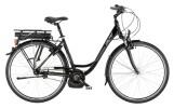 E-Bike Falter P 9.0 E