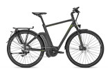 E-Bike Raleigh Ashford S 10