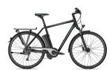 E-Bike Raleigh Stoker Impulse 9