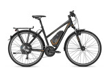 E-Bike Raleigh Stoker X 3
