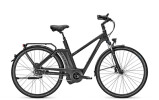 E-Bike Raleigh Newgate  /R