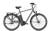 E-Bike Raleigh DOVER IMPULSE XXL / R XXL