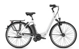 E-Bike Raleigh DOVER IMPULSE 8 / 8R HS