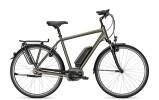 E-Bike Raleigh CARDIFF B8 / B8R