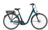 E-Bike Raleigh GROOVE UD