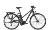 E-Bike Raleigh LEEDS IMPULSE 9 HS