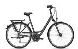 Trekkingbike Raleigh OAKLAND DLX