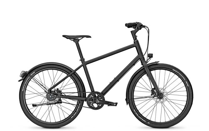 Urban-Bike Raleigh DUNDEE EIGHT 2016
