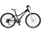 Mountainbike Trek Precaliber 24 21-Speed Girl's