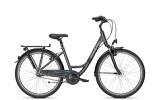 Citybike Raleigh UNICO PLUS