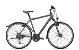 Trekkingbike Raleigh STREETMAX 2.0