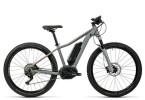 E-Bike Cube Access WLS Hybrid SL 500 grey´n´neoncoral