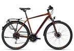 Trekkingbike Cube Touring Exc sunburnt metallic