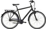 Citybike Falter C 3.0 FG Herren
