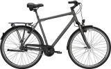 Citybike Falter C 4.0 Plus Herren