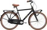 Hollandrad Falter L 4.0 Cargo-Style 7-G Herren