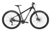 Mountainbike BiXS Mariposa 100