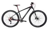 Mountainbike BiXS Core 300