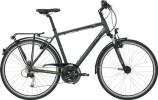 Trekkingbike GIANT Argento 1 LTD GTS