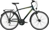 Trekkingbike GIANT Argento 3 GTS