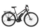 E-Bike Bergamont E-Line C MGN