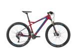 Mountainbike Bergamont Roxtar 9.0