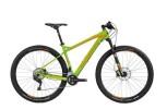 Mountainbike Bergamont Revox LTD Carbon