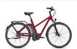 E-Bike Kalkhoff Include Premium 8/8R