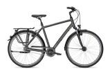 Citybike Kalkhoff Image 8R