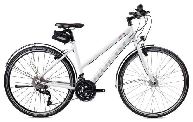 E-Bike vivax assist vivax cross XT 2016